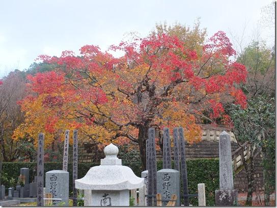 2016京都紅葉 148