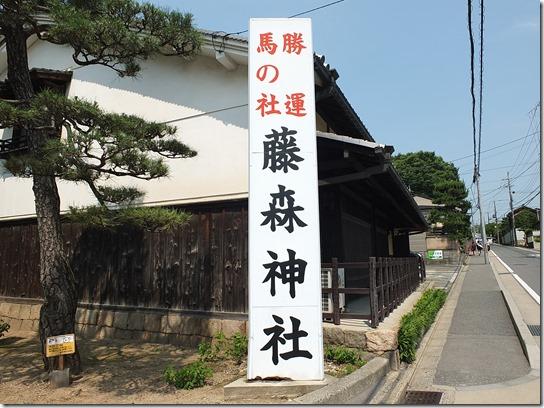 奈良・京都紫陽花2017 150
