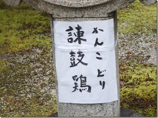 京都 初詣 151