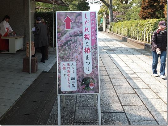 2017 関西 梅 158