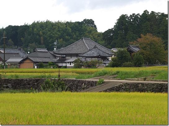 コスモス奈良 164
