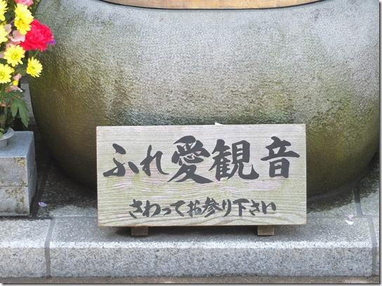 鎌倉 牡丹 桜 168