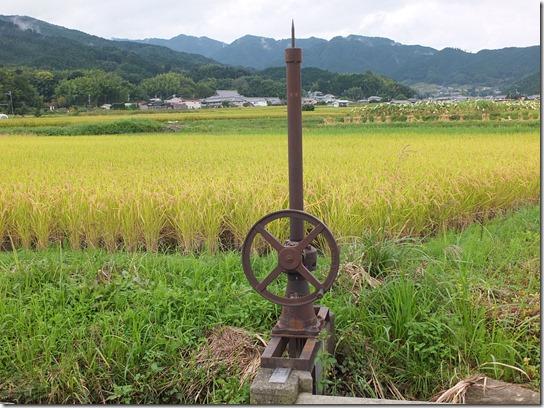 コスモス奈良 173