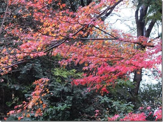 大阪 鎌倉 東京 173
