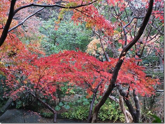 大阪 鎌倉 東京 176