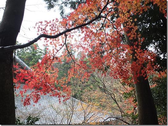 大阪 鎌倉 東京 178