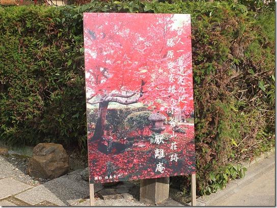 2016京都紅葉 178