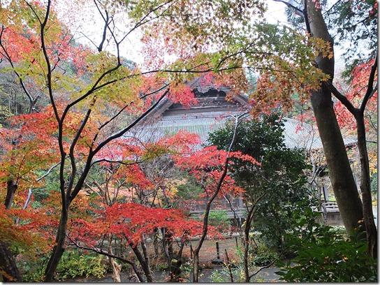 大阪 鎌倉 東京 180