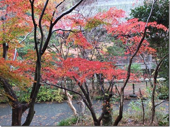 大阪 鎌倉 東京 185