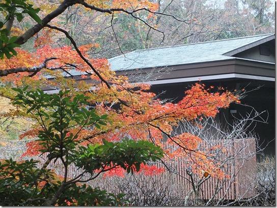 大阪 鎌倉 東京 186