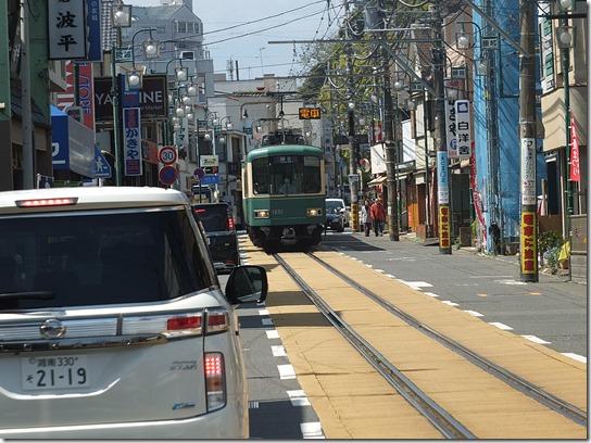 鎌倉 牡丹 桜 187