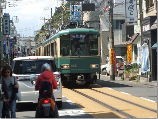 鎌倉 牡丹 桜 188