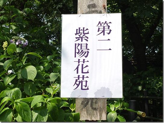 奈良・京都紫陽花2017 189