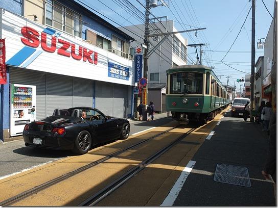 鎌倉 牡丹 桜 190