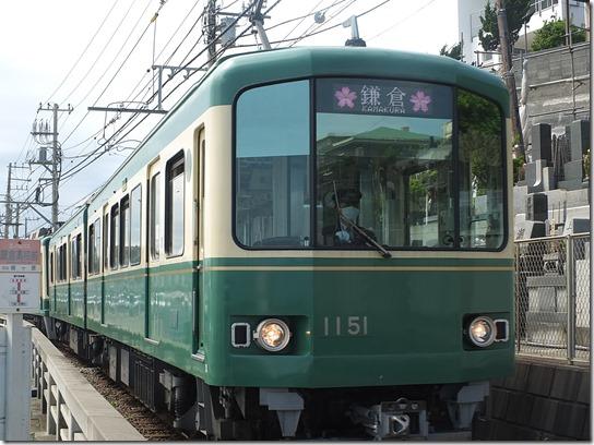 鎌倉 牡丹 桜 198