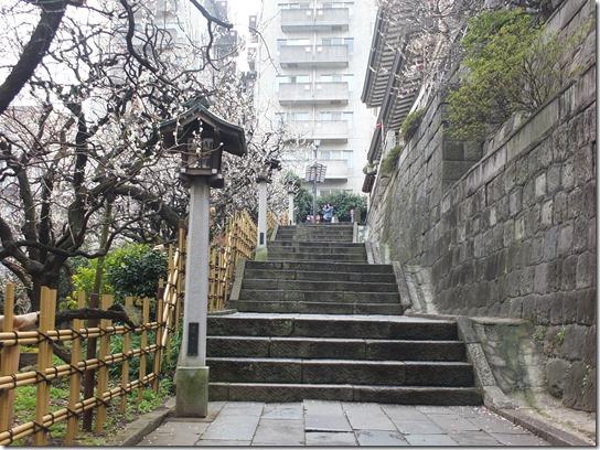 2017東京の梅 023