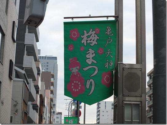 2017東京の梅 216