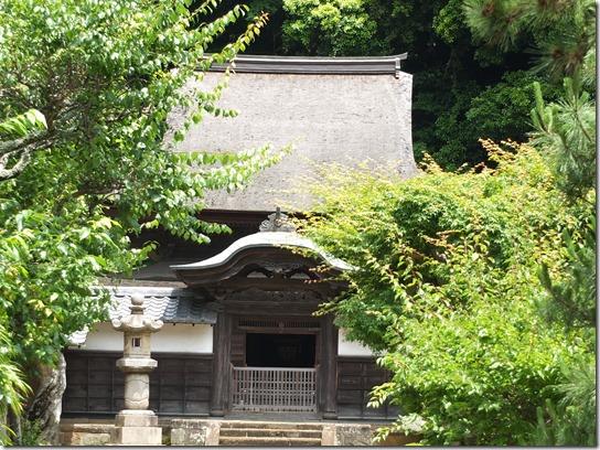 2017鎌倉 紫陽花 339