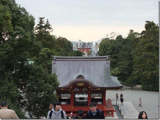 2017東京の梅 370