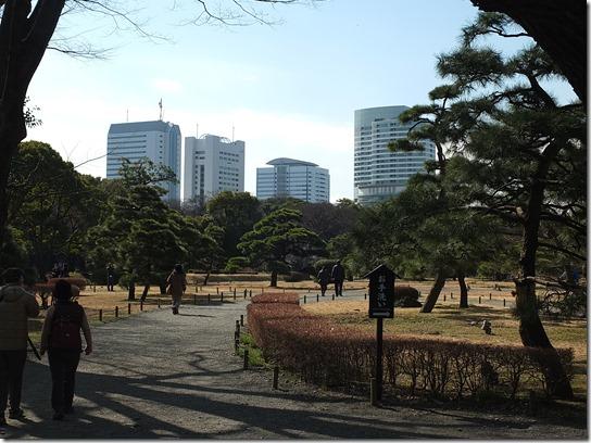 2017東京の梅 591