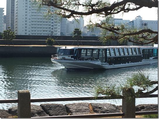 2017東京の梅 642