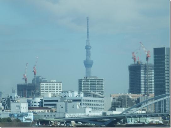 2017東京の梅 663