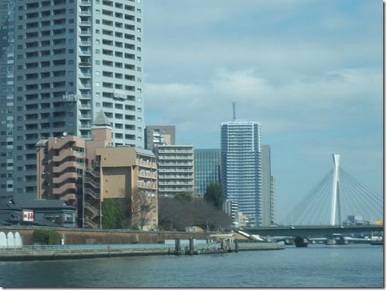 2017東京の梅 676