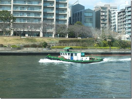 2017東京の梅 682