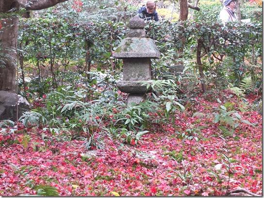 2016京都紅葉 201