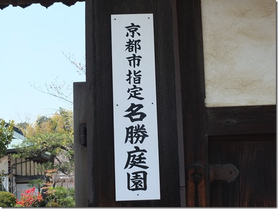 2017京都桜 225