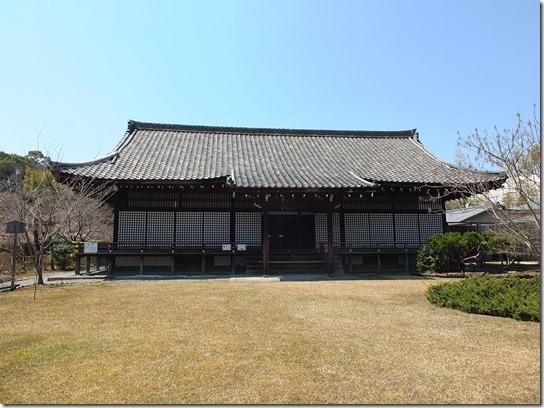 2017京都桜 230