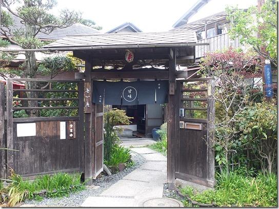鎌倉 牡丹 桜 233