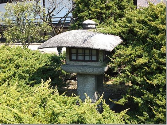 2017京都桜 238