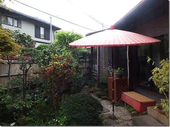 鎌倉 牡丹 桜 240