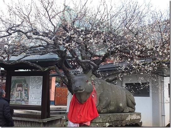 2017京都節分 242