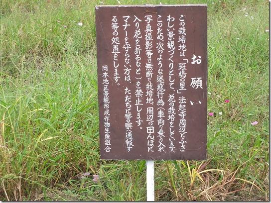 コスモス奈良 243