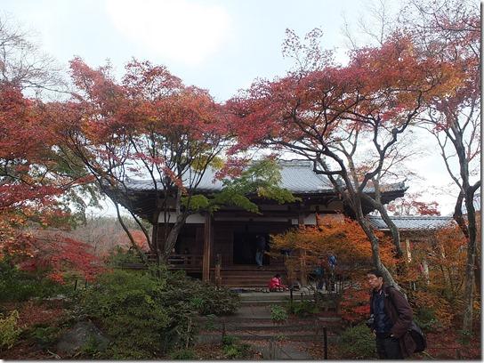 2016京都紅葉 266