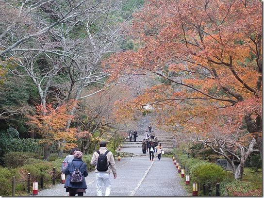 2016京都紅葉 273