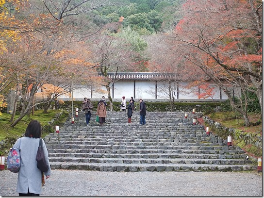 2016京都紅葉 279