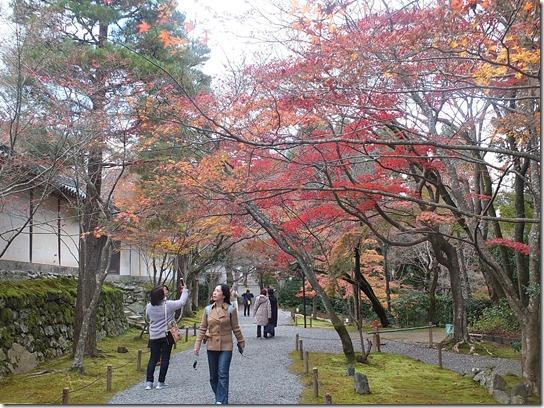 2016京都紅葉 289