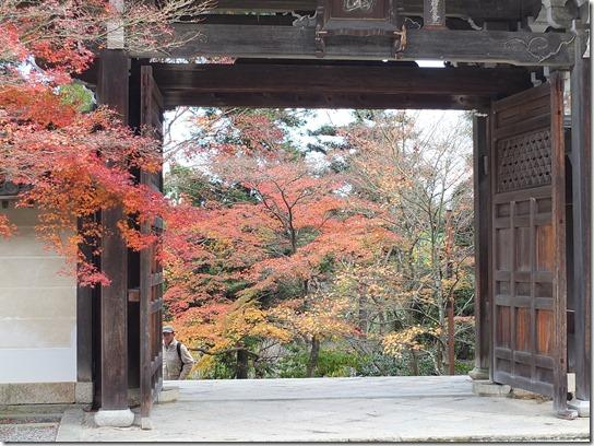 2016京都紅葉 293