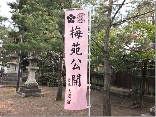 2017 関西 梅 323