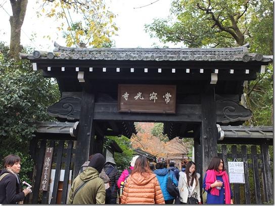 2016京都紅葉 326