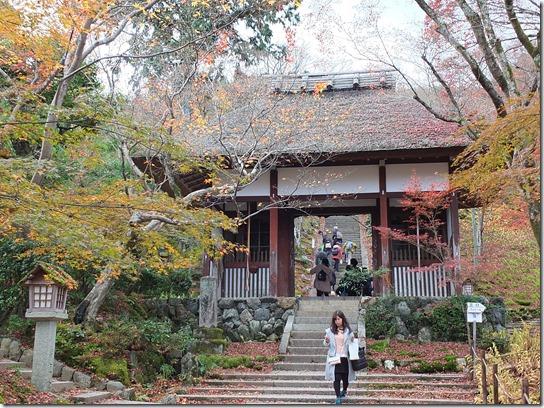 2016京都紅葉 328