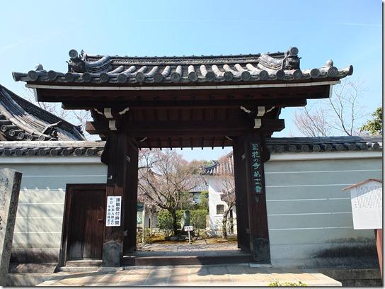 2017京都桜 333