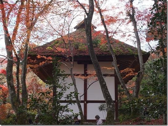 2016京都紅葉 358