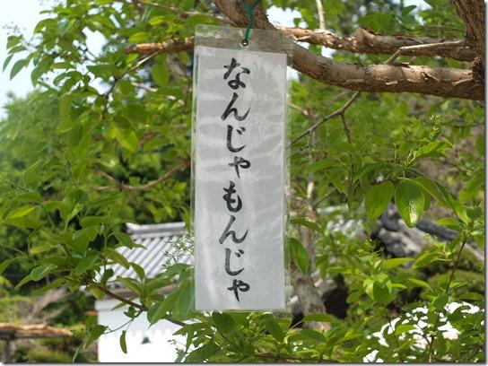 牡丹 関西 2017 358