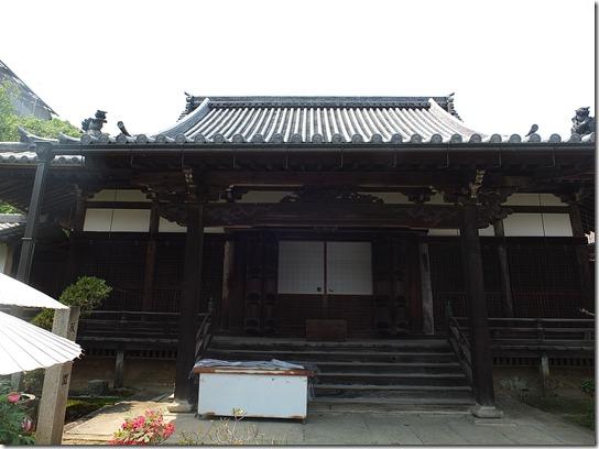 牡丹 関西 2017 393