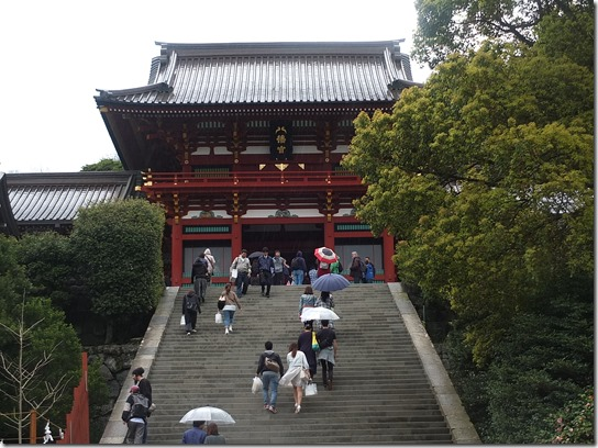 鎌倉 牡丹 桜 394