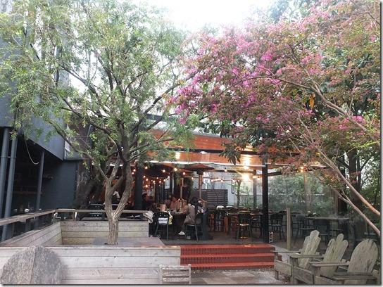 鎌倉 牡丹 桜 397